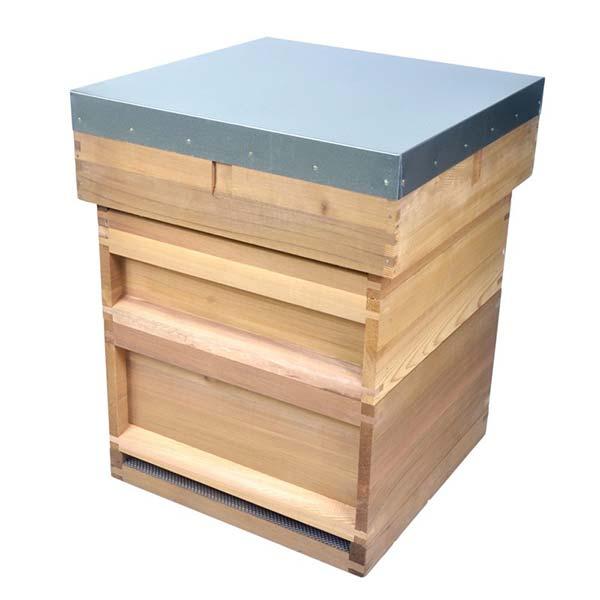National_hive