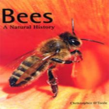 Bees-A-Natural-History