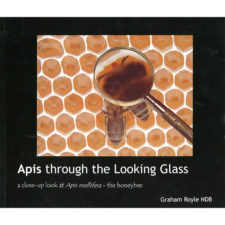 apis-through-the-looking-glass-royle