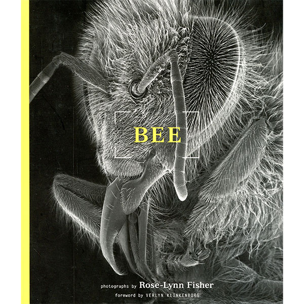 bee-fisher