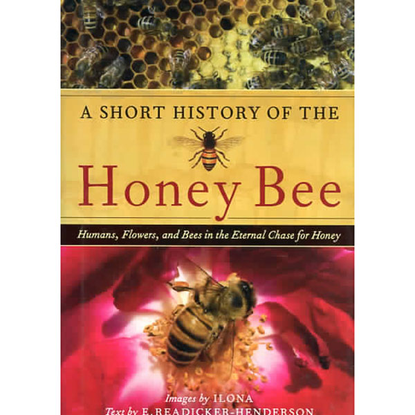 history-of-honey-bee